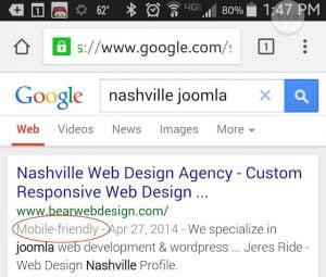 google-announces-mobile-friendly-search-tags-bear-web-design_20150619-031242_1.jpg