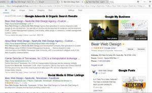 My-Digital-Profile-Bear-Web-Design.jpg