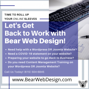 Let's Get Back To Work with Bear Web Design